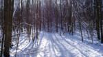 February 20th: Arc of Appalachia Winter Walk
